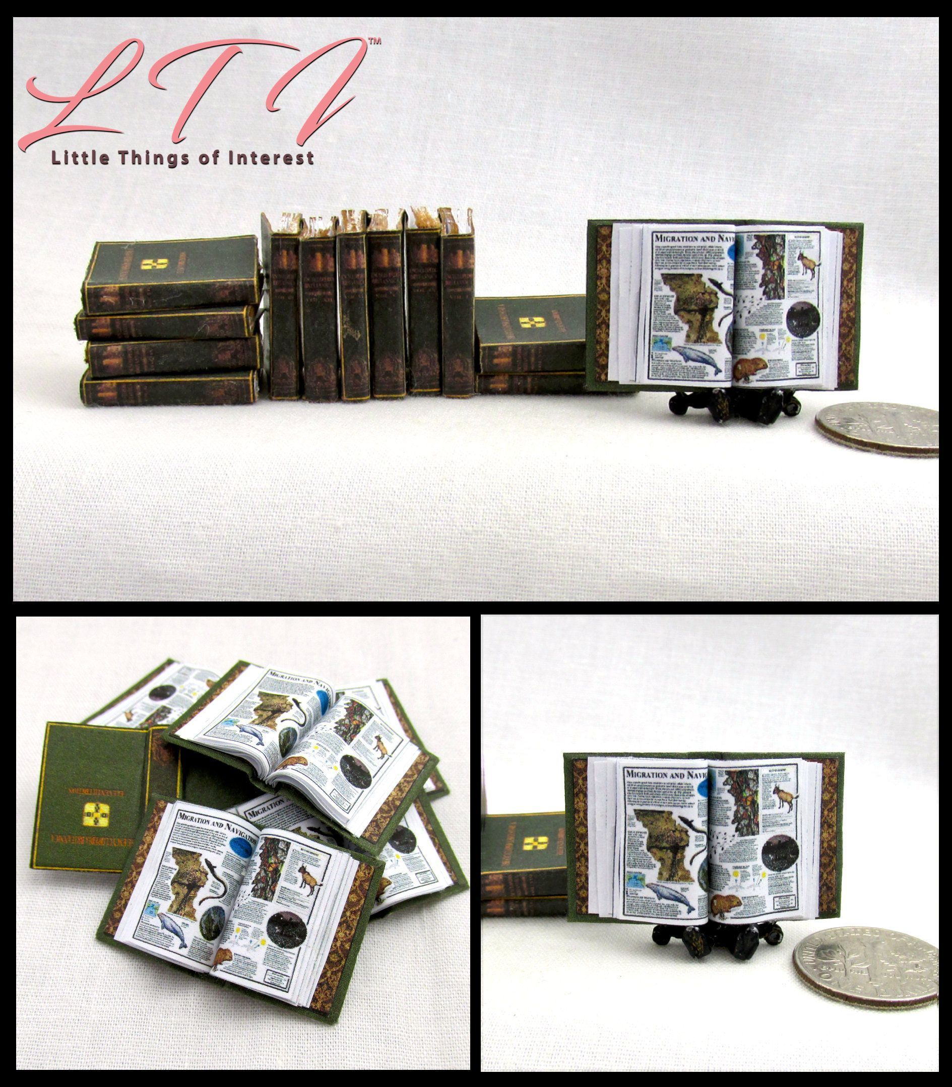 Dollhouse miniature handcrafted Medical Examiners diploma 1//12th scale