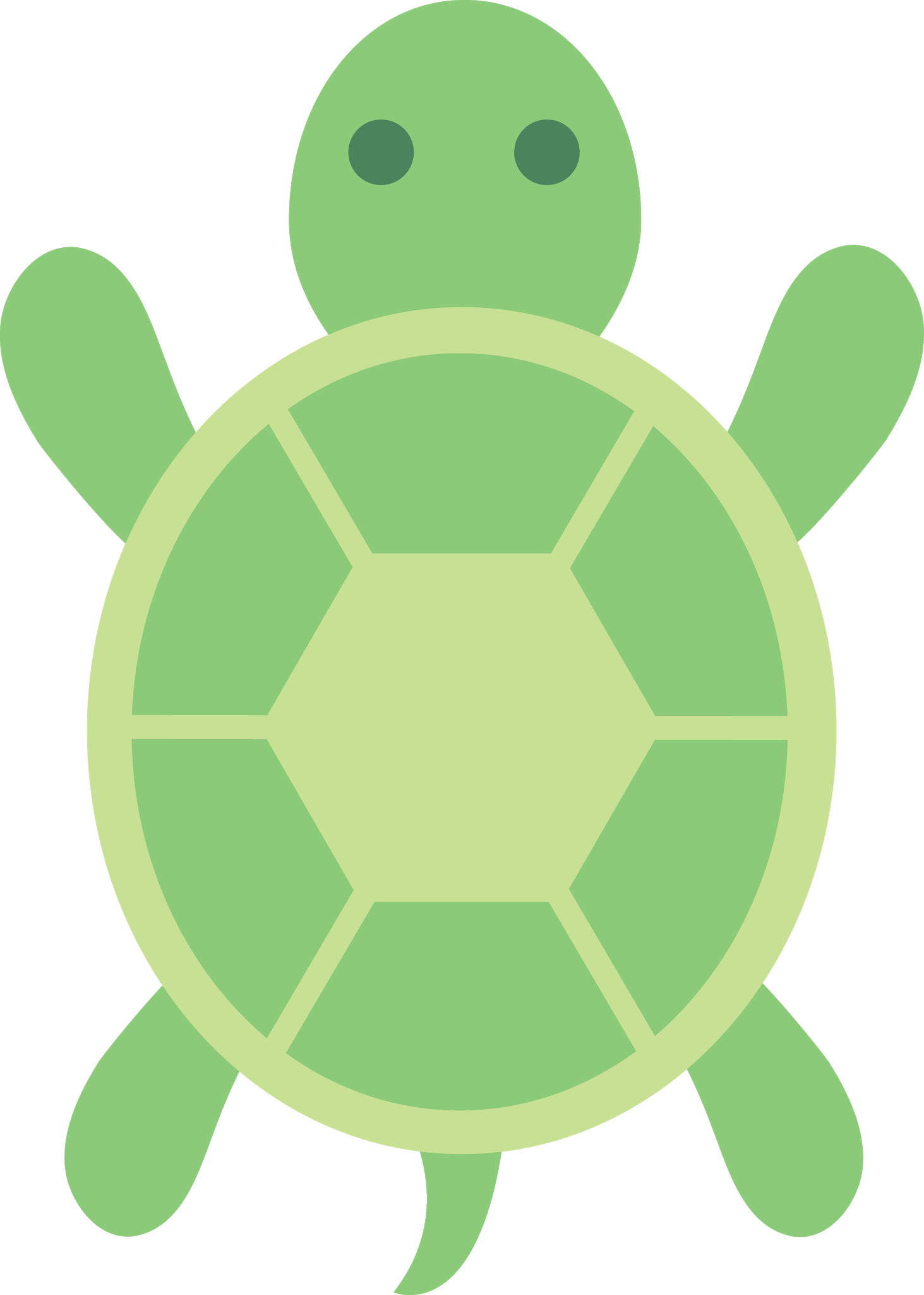 Turtle Outline Png Turtle Png Image And Clipart Turtle Crafts Art And Craft Videos Free Clip Art