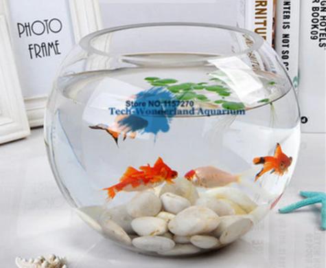 Glass Aquarium Fishbowl Tank Round Fish Bowl Decorations Fish Tank Planted Aquarium