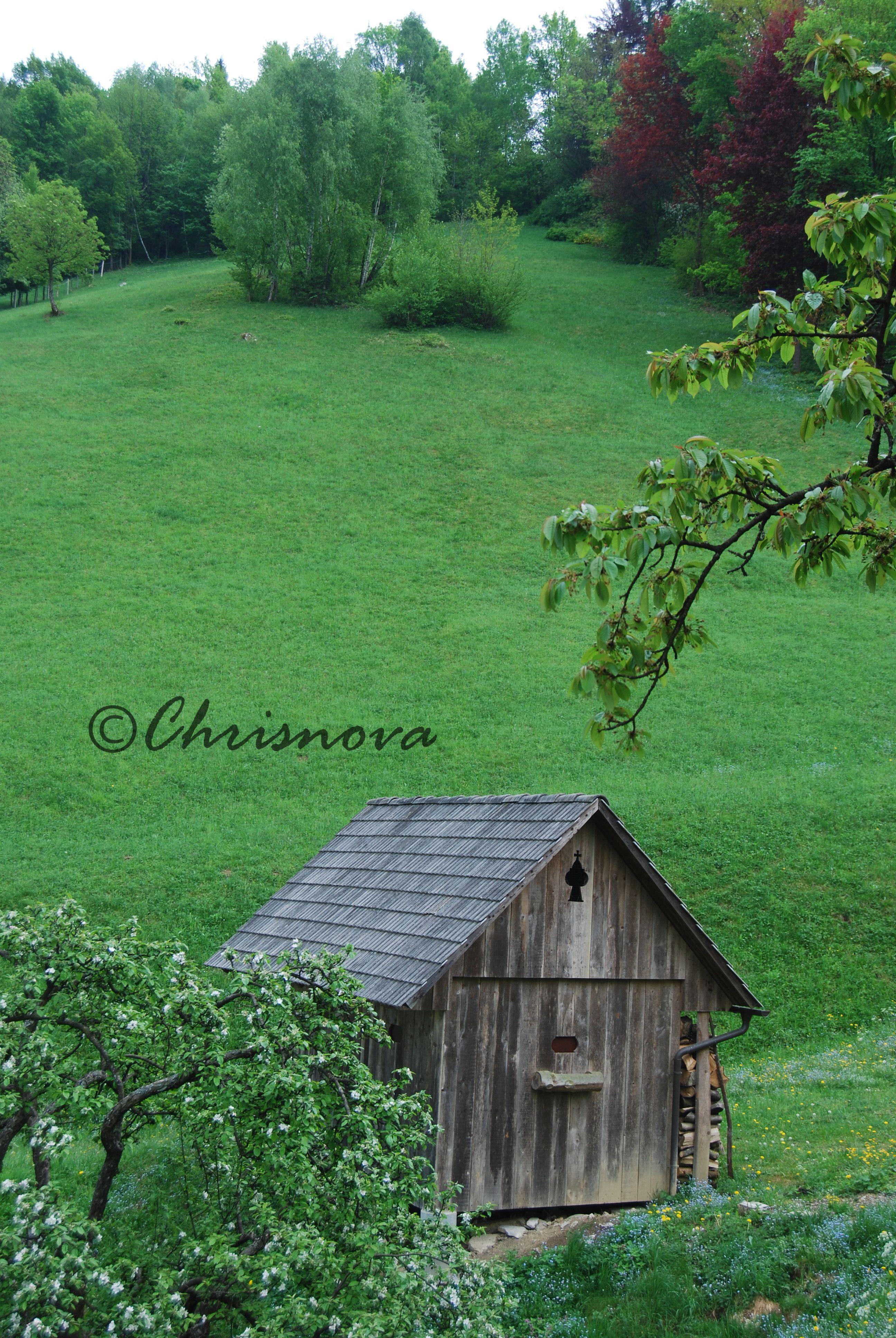 Photography Chrisnova