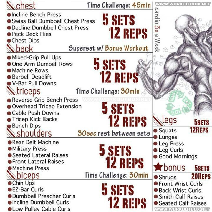 1000 Ideas About Workouts To Get Ripped On | Gym | Bodybuilding workouts, Workout, Full body