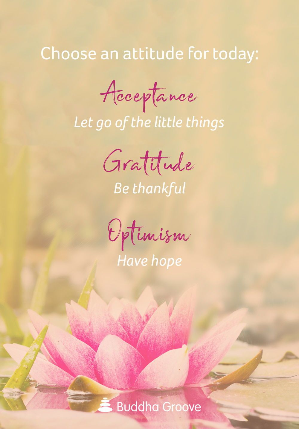 Theme of the Week: Attitude (With images) | Good vibes quotes ...