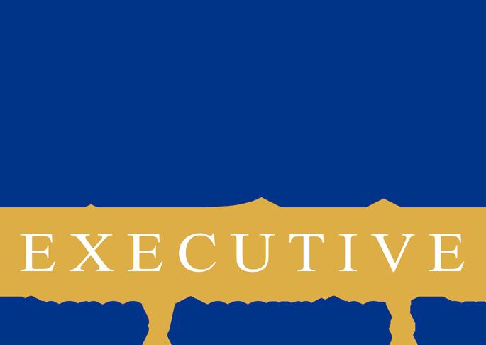 IBH Executive logo