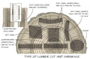 Type of Lumber Cut and Shrinkage. Easiest to see how cut from end grain,  if quarter sawn rings are 45-90 degrees to face vs flat which is less than 45 deg.