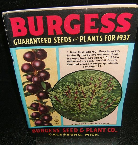 Vintage 1937 Burgess Seed And Plant Catalog By Cyrsties On Etsy 15 99 Old Garden Tools Plant Catalogs Amazing Gardens