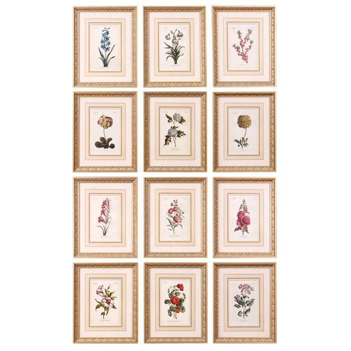 12 Piece Flower of the Month Framed Print Set | Cool Denim ...