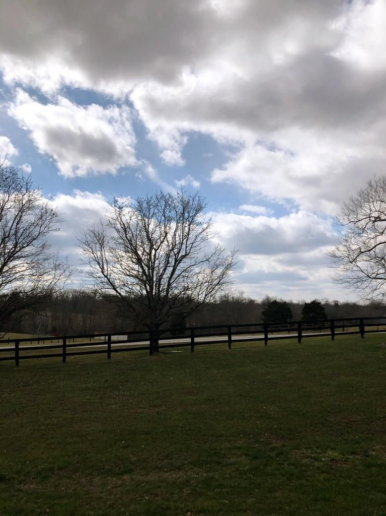 ITAP of the country (Versailles KY)#PHOTO #CAPTURE #NATURE #INCREDIBLE