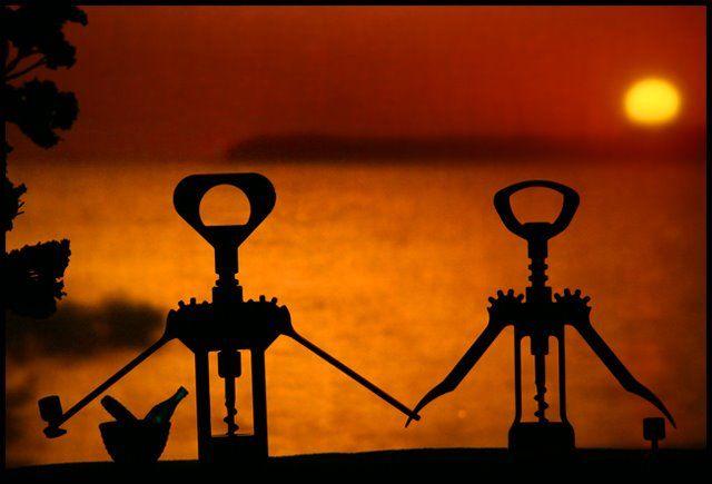 cute... corkscrews at sunset