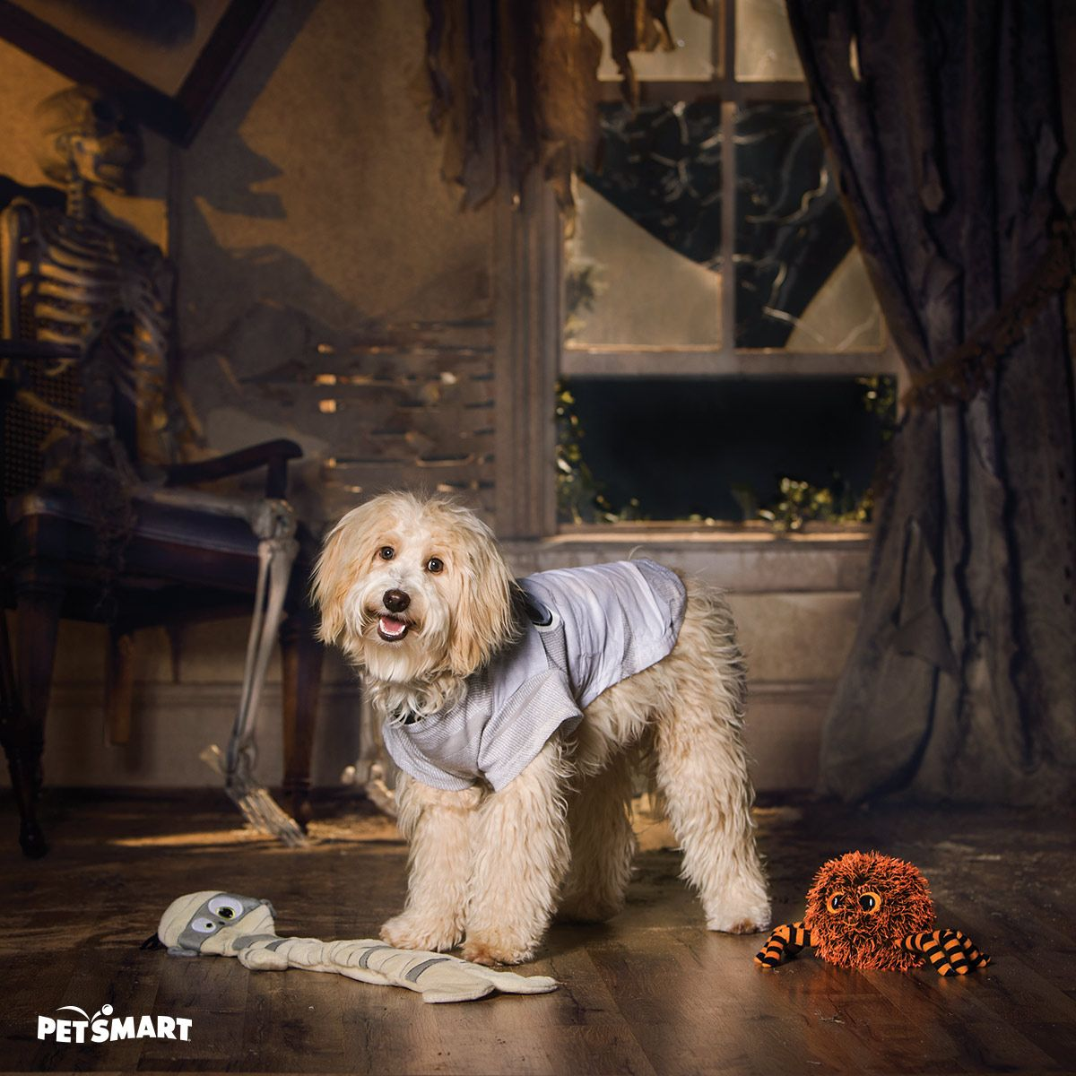 Looking For A Unique Halloween Costume For Your Dog Then Look No Further Than This Frightful Mummy Costume For Your Pu Dogs Unique Halloween Costumes Your Dog