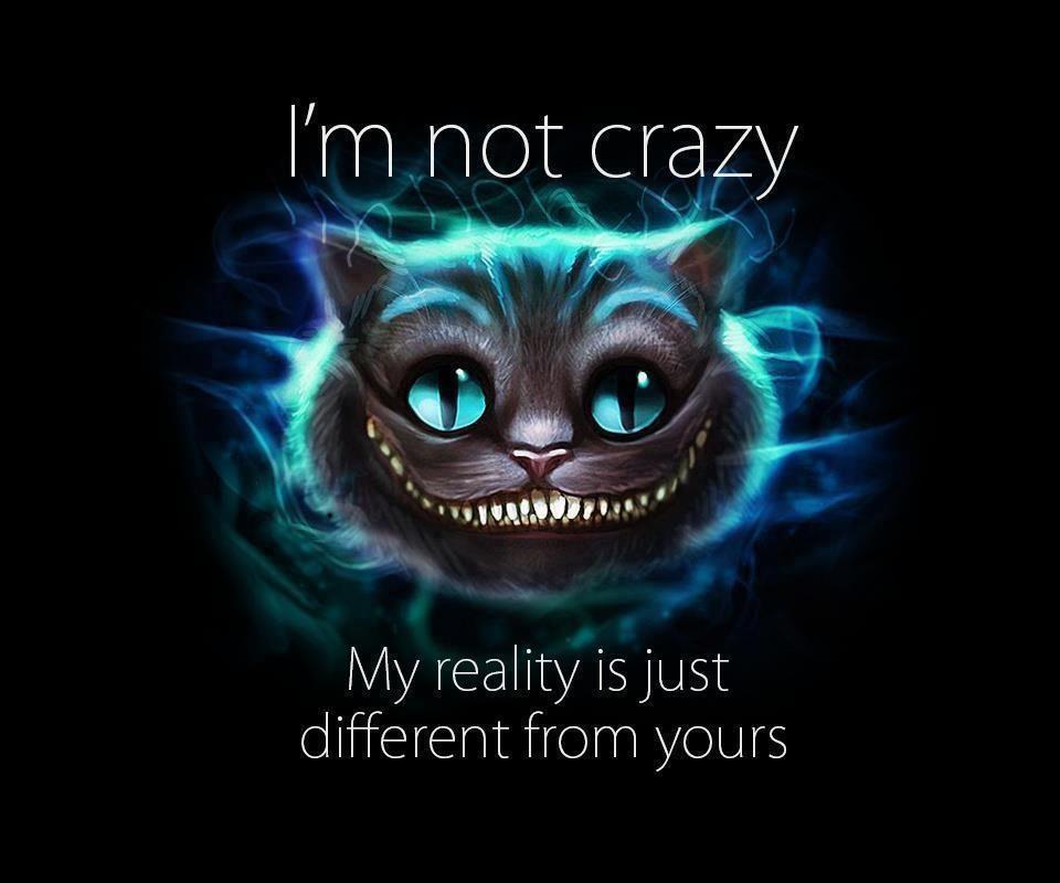 Pinterest Funny Crazy Quotes: I'm Not Crazy