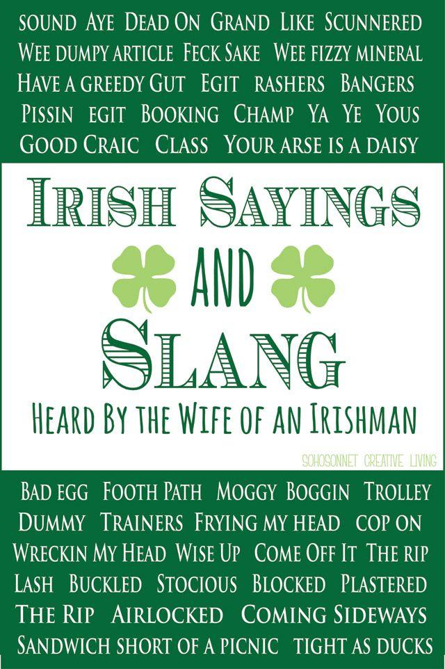 REAL Irish Sayings {From the Wife of an Irishman | Picnics, Irish ...