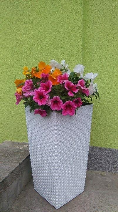Pomysl Na Kompozycje Wiosennych Kwiatow W Wysokiej Donicy Na Hydroboxie Hydrobox Hydroboxpl Kwiaty Flowers Diy Flowerpot Planter Pots Planters Canning