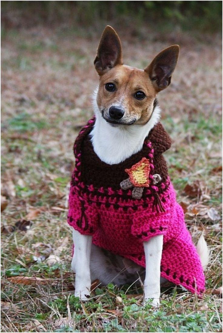 Crochet Dog Sweaters (Free Crochet Patterns & Video Tutorials ...