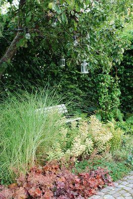 Annas underbara trädgård