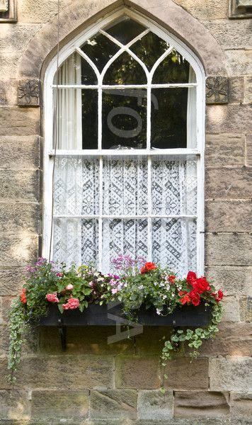 Ripley Yorkshire Uk Window Flower Box Window Box Flowers Cottage Windows Flower Window