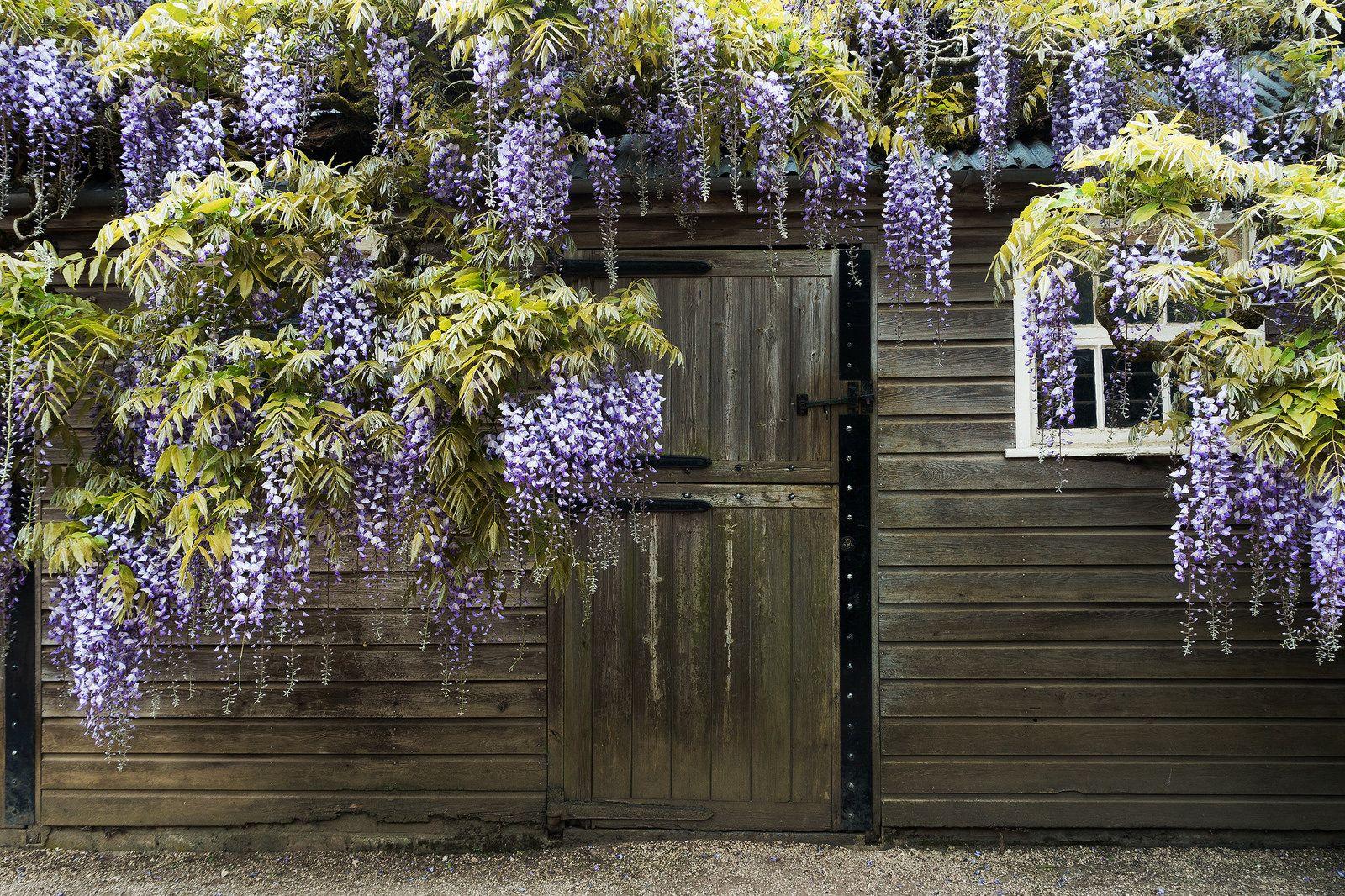 Hidcote Manor Garden | Manor garden, Garden, Outdoor decor on Kingdom Outdoor Living id=41531