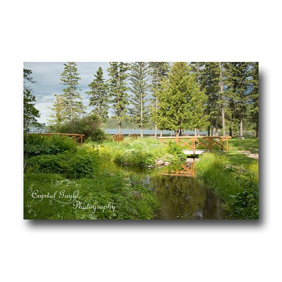 National Park Print Wooden Bridges Water Streams Green grass evergreen trees coaster greeting card calendar
