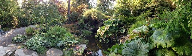 Bellevue Botanical Garden | Flickr - Photo Sharing!