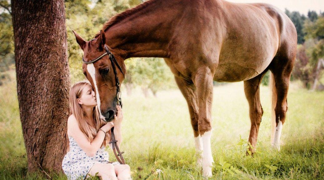 mädchen mit pferd horse girl photograpy  pferde