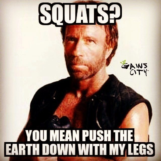 Image result for SQUAT DAY