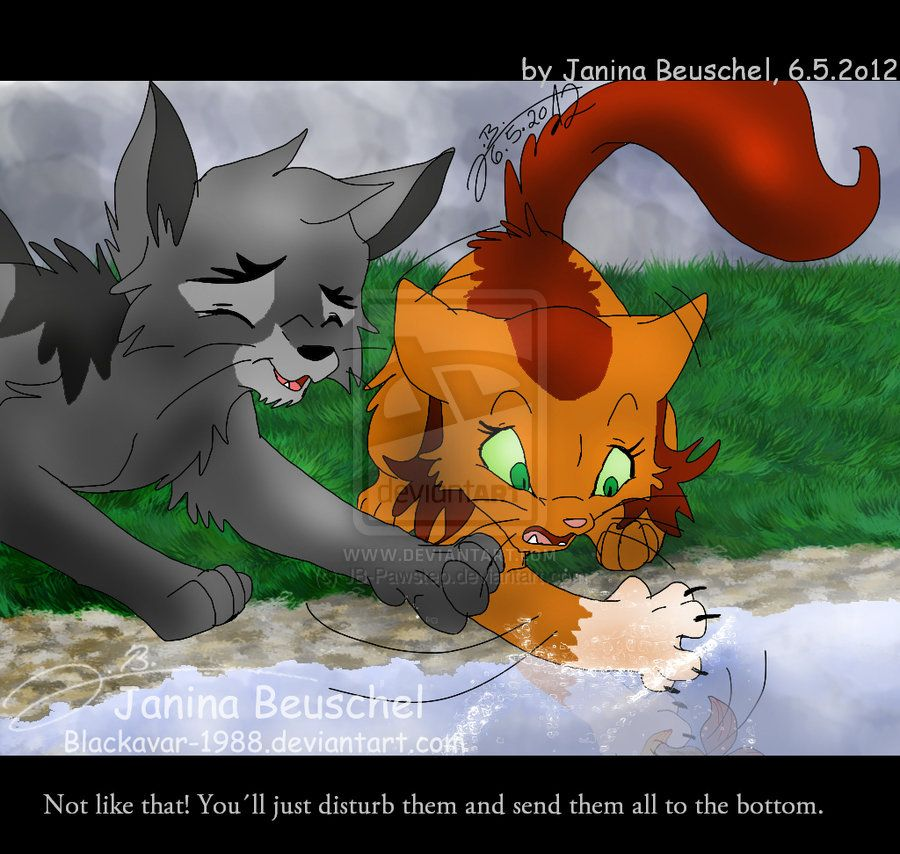 Warriors Forest Of Secrets Lexile: Do You Think These Two Would Have Been Cute Together