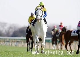 Shirokun | horse racing data - netkeiba com | Luminous