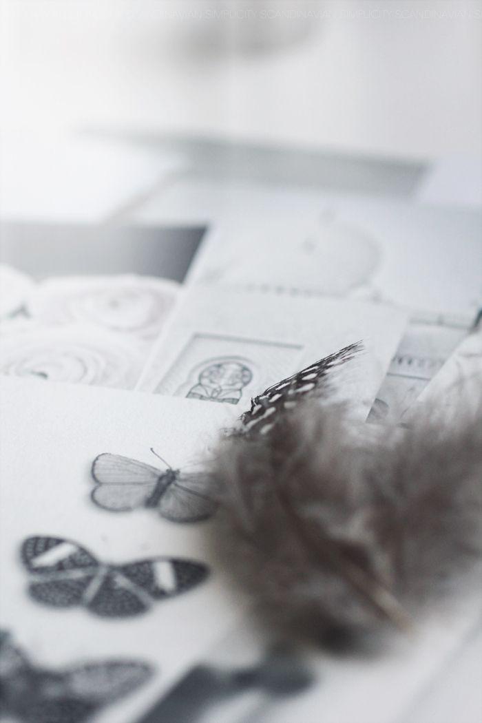 Scandinavian Simplicity - feather