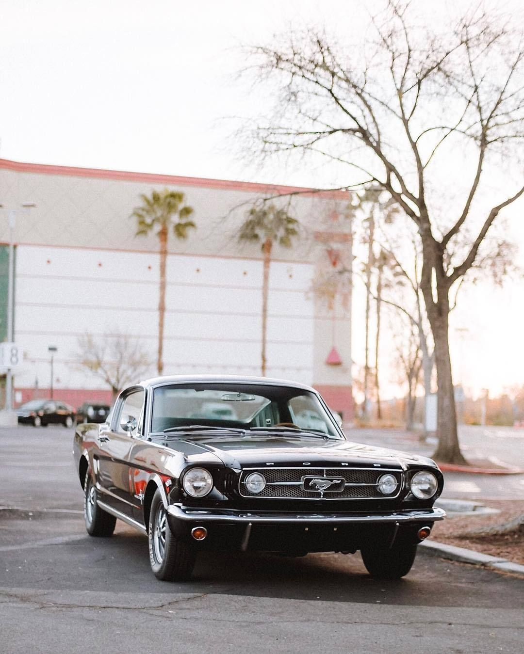Ford Mustang Fastback, Mustang, 1960s Cars