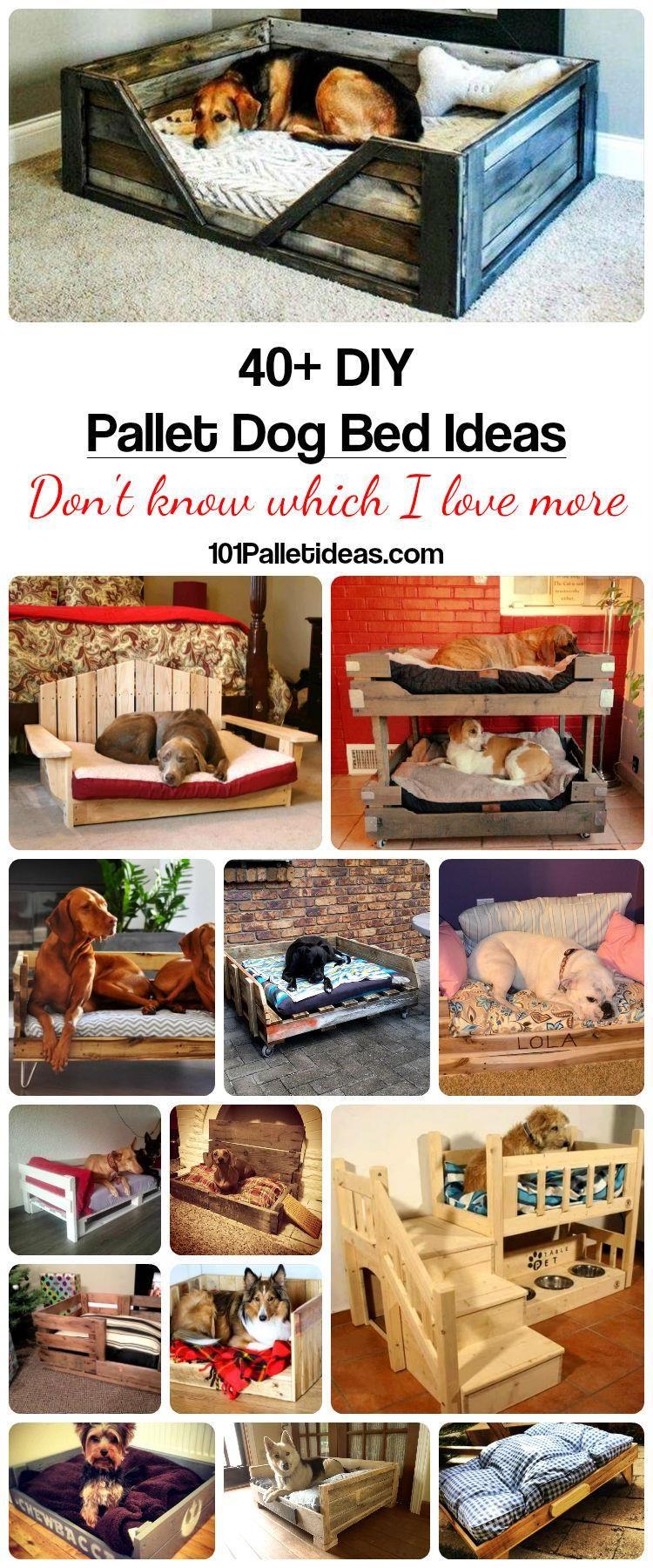 Pallet Dog Bed Diy Pallet Projects Hunde Bett Hunde Hundebett