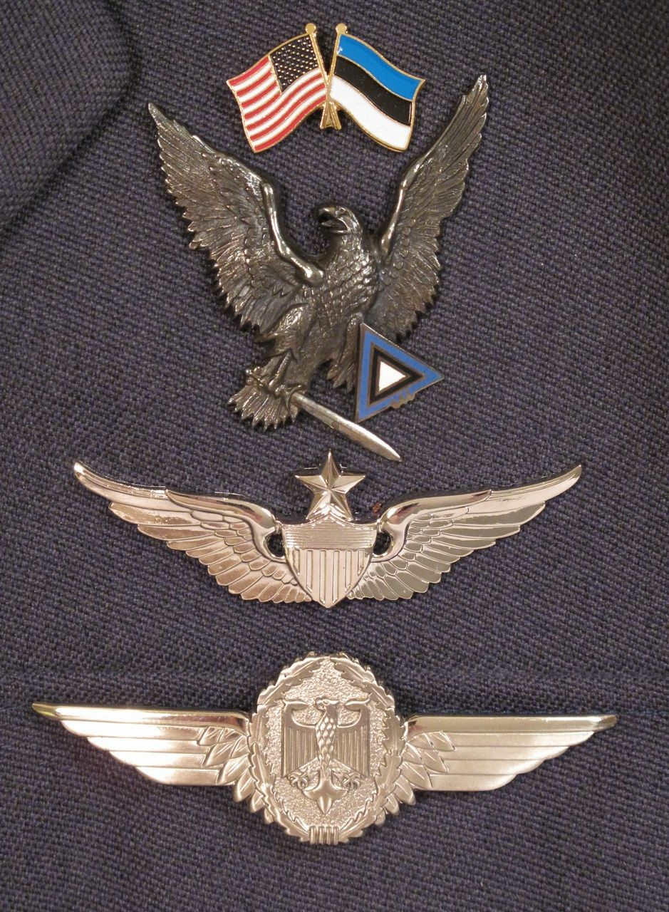 WTF? ) Badge, Army, Wings