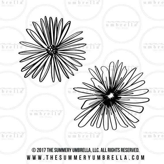 Gerbera Daisy SVG, Daisy SVG, Hand Drawn, Flower Cut File, Flower