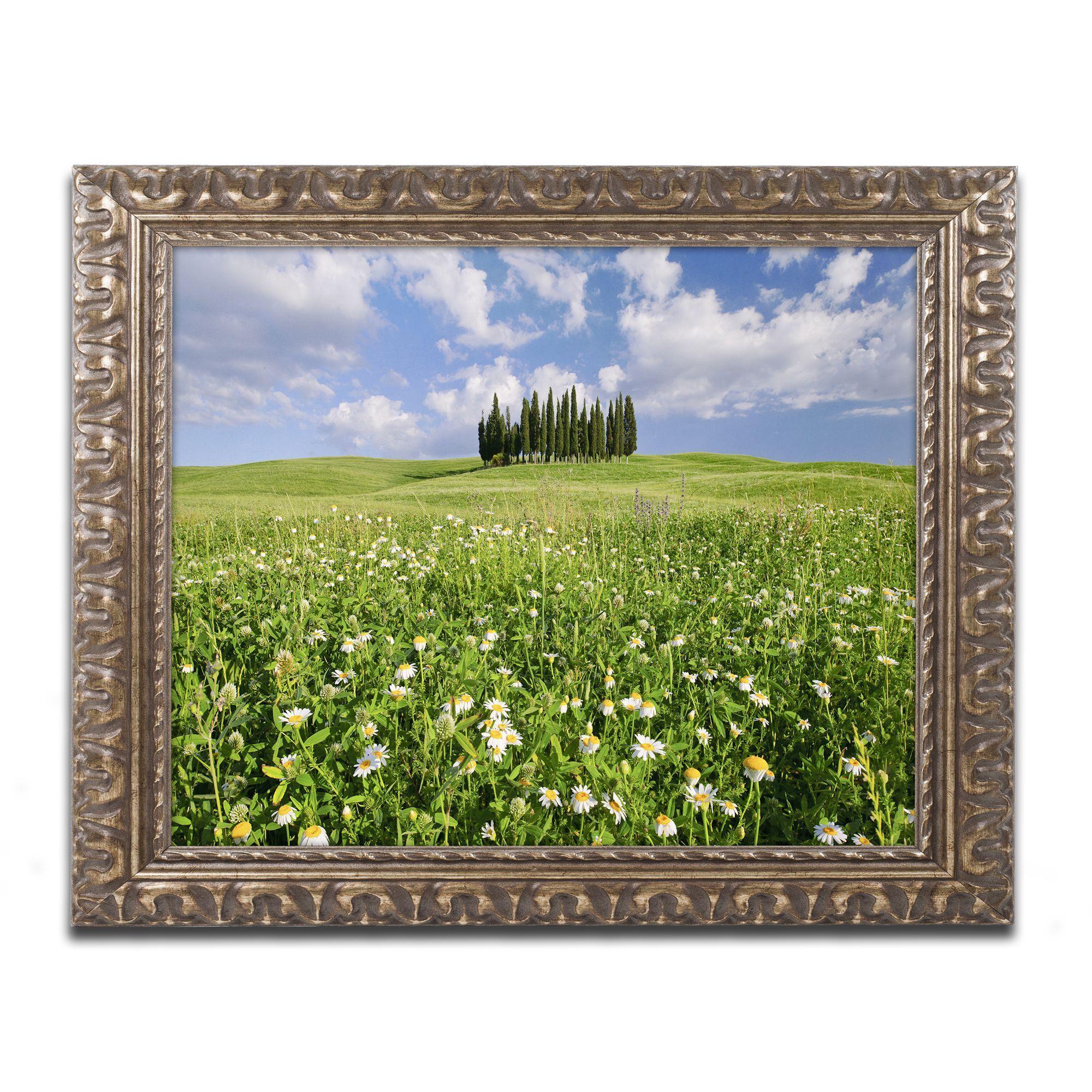 Michael Blanchette Photography 'Cypress Hill' Ornate Framed Art