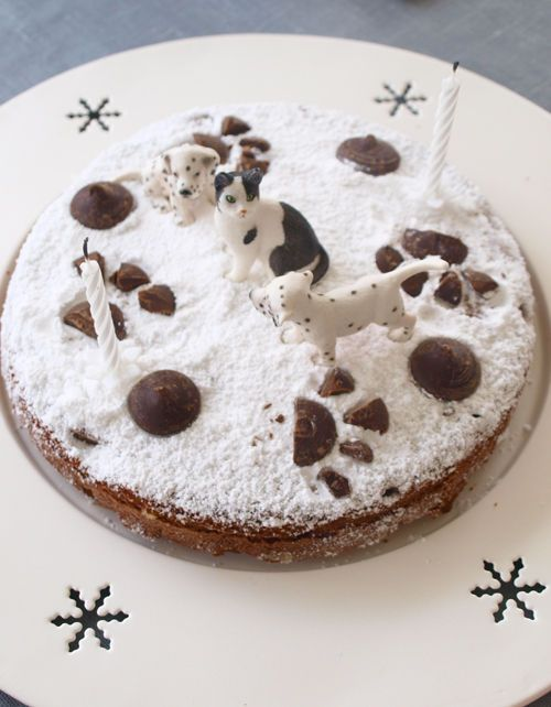 gateau anniversaire chien recette