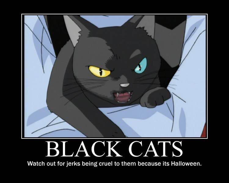 Ghost stories anime motivational posters black cat