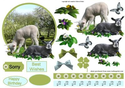 Sheeps in orchard on Craftsuprint - Add To Basket!