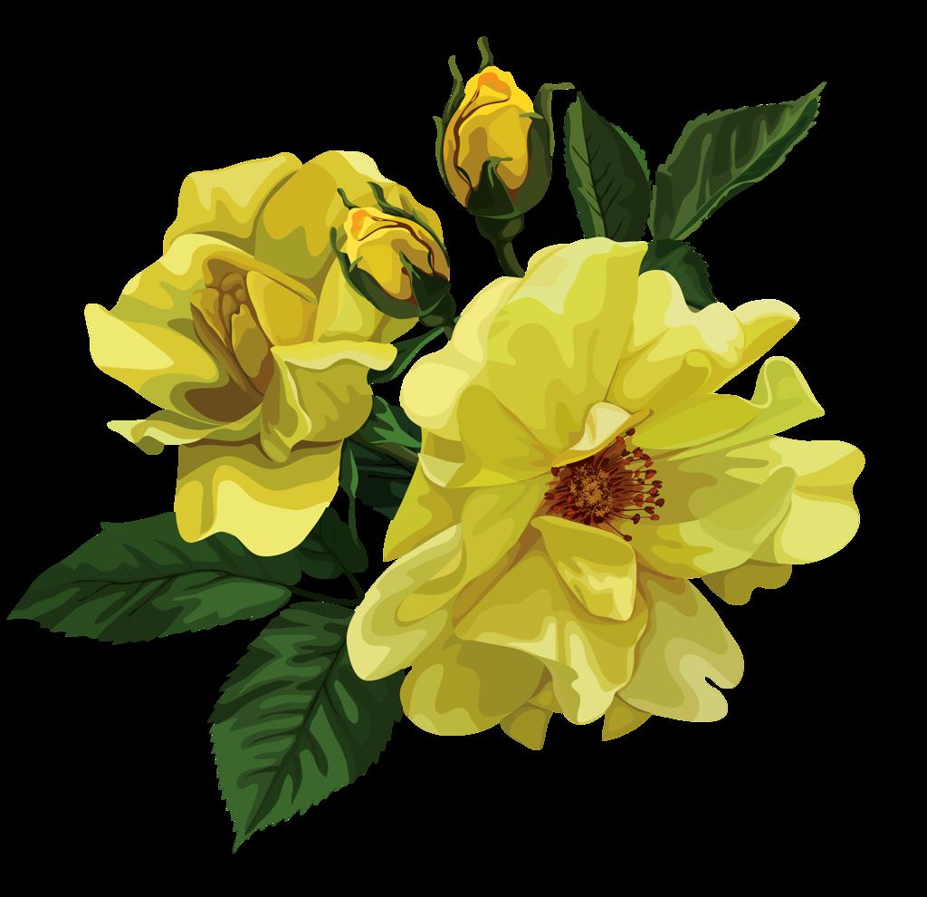 soloveika flowers pinterest soloveika izmirmasajfo