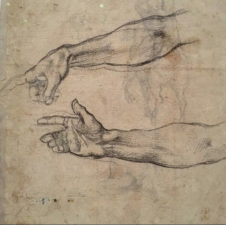 michelangelo hand and arm studies for creation of adam sistine