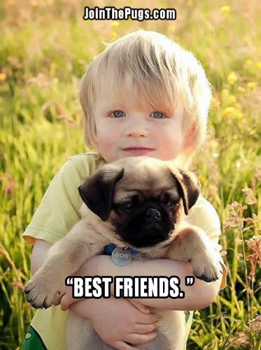 Kids And Pugs Are Besties Dogs Kids Cute Pugs Animals For Kids