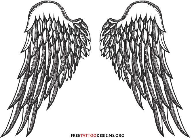 Imgs For Gt Realistic Angel Wings Drawings With Images Wings