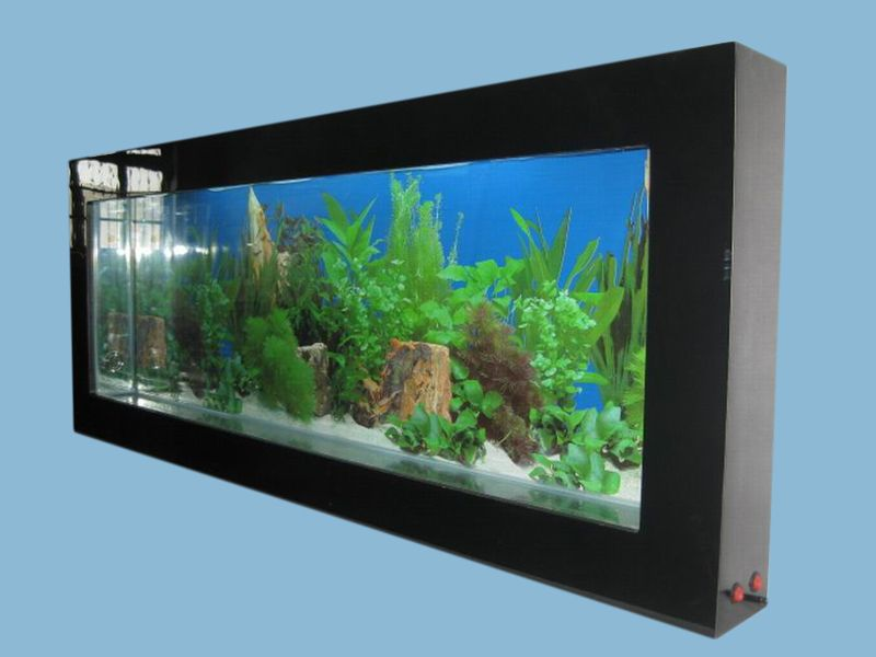 Wall-mounted aquarium wall aquarium glass fish tank acrylic wall fish .