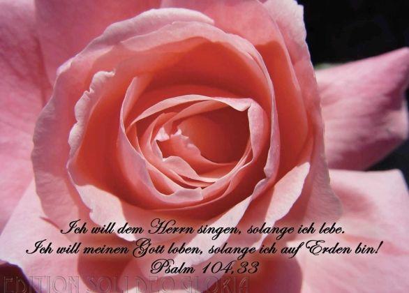 Christliche Postkarte 21 Psalm 104 Grusskarte Zum Geburtstag Blumen Bibel A La Carte Spruche Zur Goldenen Hochzeit Grusskarten Geburtstag Christliche Karten