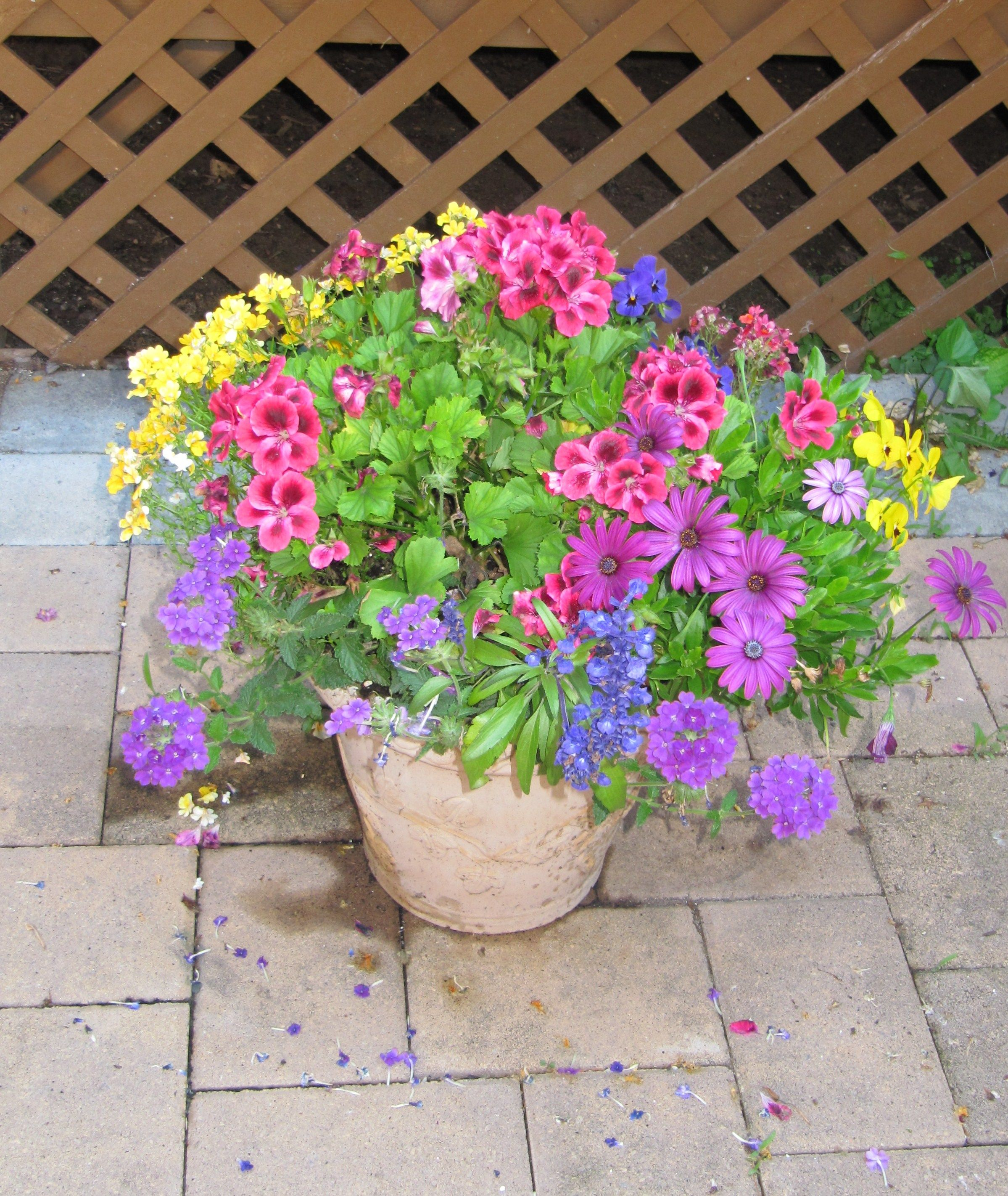 Spring Planter Inspiration Gardening And Gardens Container