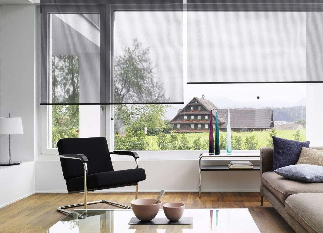 sunscreen roller blinds in this living room demonstrate that you can still see out
