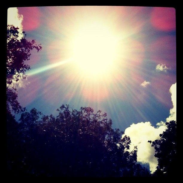 @dennisvansteijn   Zalig zonnetje   Sunny side of life