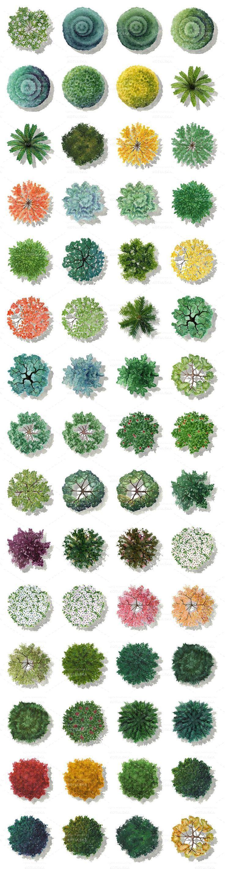 photoshop bitki planları ile ilgili görsel sonucu #architektonischepräsentation