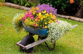 Beautiful Container Garden Ideas - Bing images