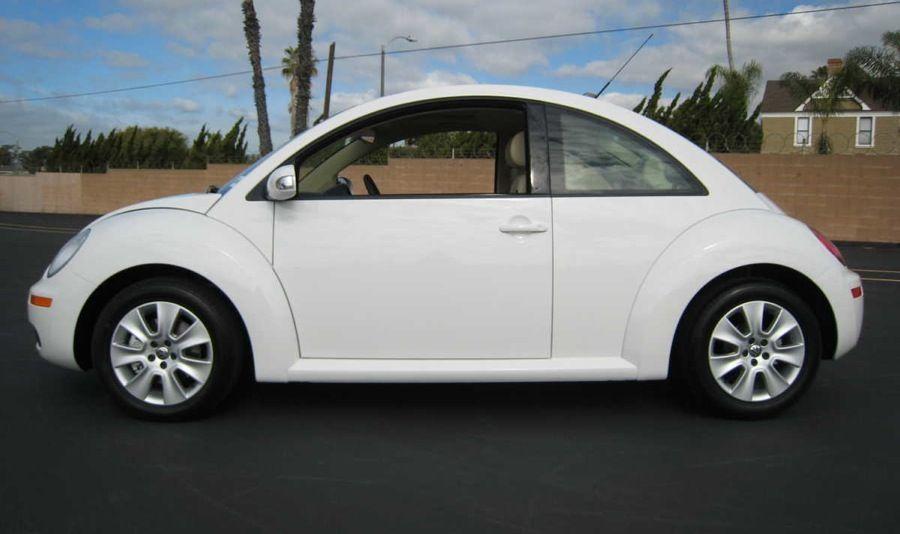 white beetle  Google zoeken  white  Pinterest  Candy