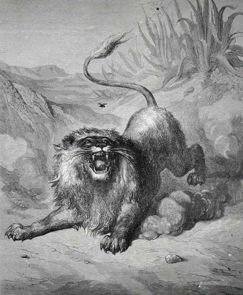 Le lion et le moucheron - Jean de La Fontaine 53feef3876609c58608b539dbb99a1d5