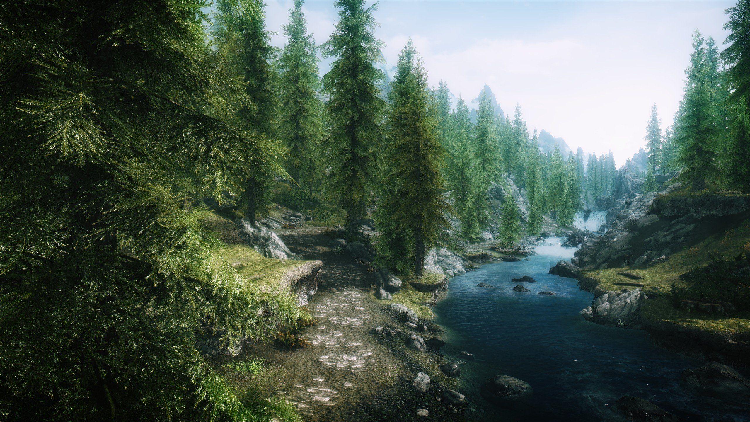 Video Games Landscapes Nature Trees Forests Rivers The Elder Scrolls V Skyrim Wallpaper 2560x1440 289505 Skyrim Wallpaper Skyrim Landscape