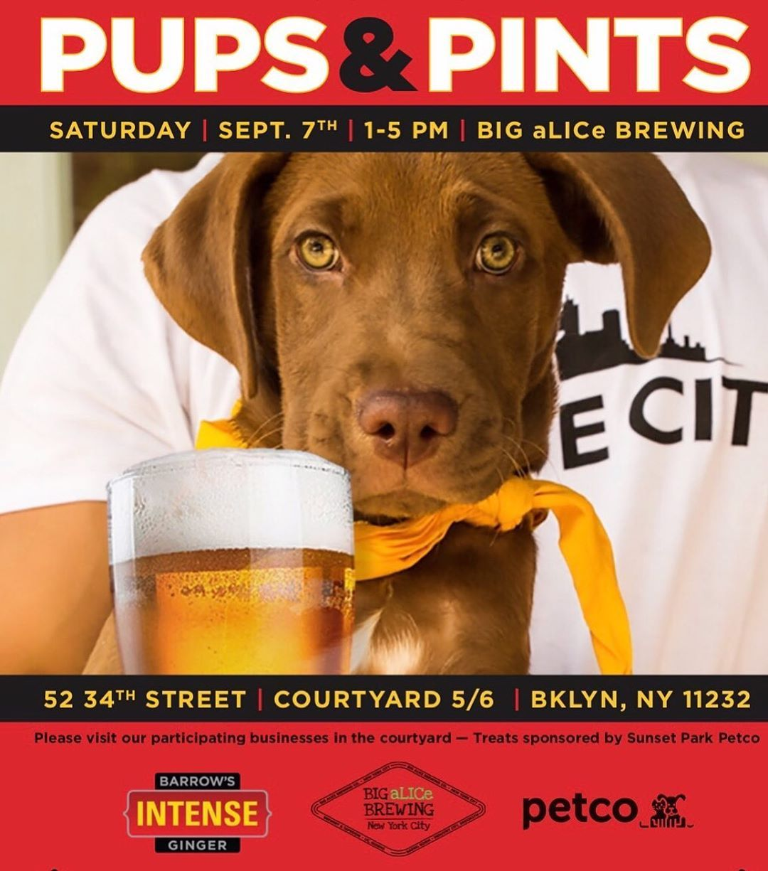 We Re Super Excited For Our First Puppies N Pints At Industrycity With Bigalicebrewing Barrowsintense And Petco Sunset Park Rsv Pup Instagram Posts Fun Drinks